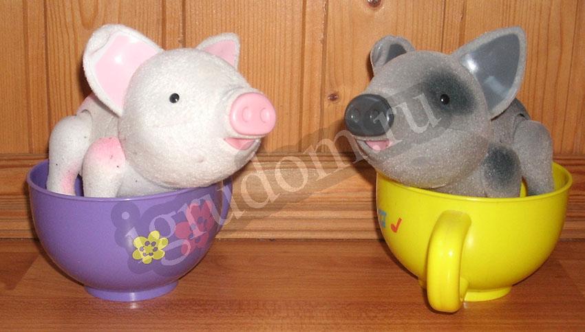 Пигис-милашка в чайной чашке, Хайти