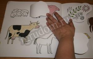 Разноцветная ферма, животные