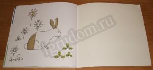 Разноцветная ферма, кролик