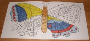 Разноцветная природа, бабочка