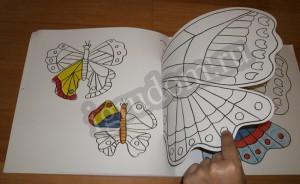 Разноцветная природа, бабочки