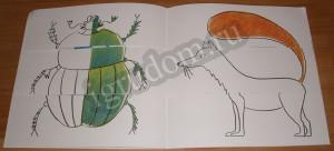 Разноцветная природа, жук и лиса