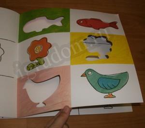 Разноцветная природа, рыбки, птички и цветочки
